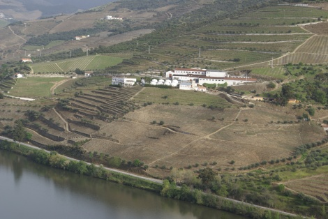Crasto's neighbour across the river: Quinta de São Luiz of Cálem.