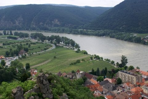 Wachau Supperin vineyard from Durnstein castle
